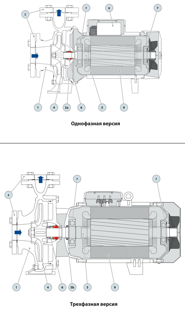 Конструкция консольного насоса Pedrollo F100/160